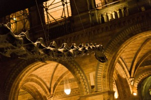 Big dinosaur at Natural History Museum